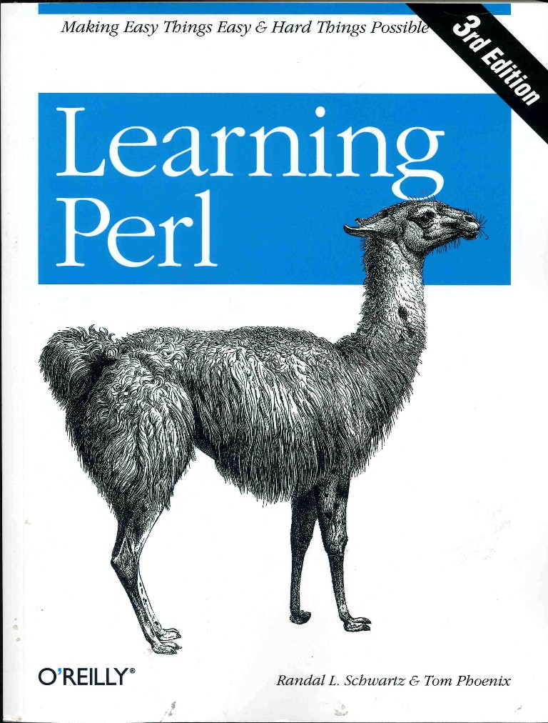 Why Learn Perl? - Perl Hacks