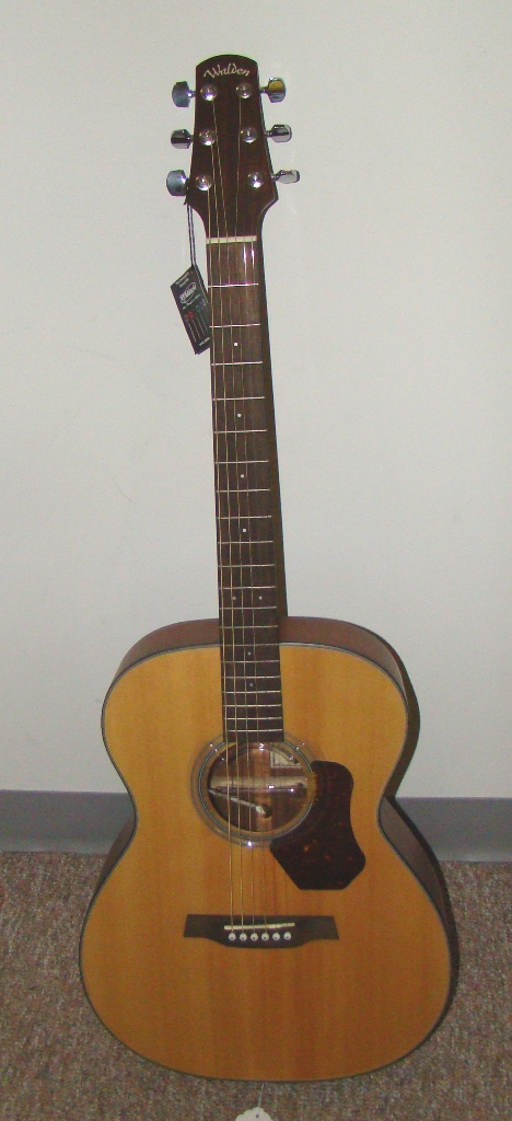 Walden Acounstic Guitar